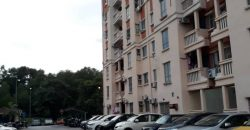 APARTMENT DANAUMAS SEKSYEN 7 SHAH ALAM (GOOD DEAL)