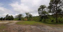 Agricultural Land Jimah Baru