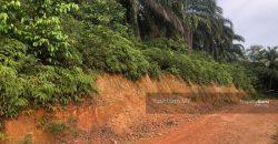 Agricultural Land@Bukit Cherakah